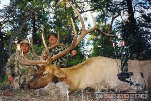 hunt elk,elk hunting,hunting elk,hunting guides,hunting brokers