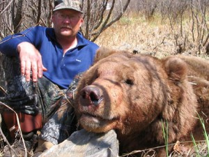 Bear hunting,hunting brown bear,hunting guides,hunting outfitters