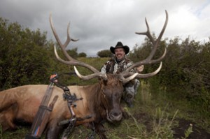 elk hunts,hunting elk,colorado elk hunts,hunting guides,hunting outfitters