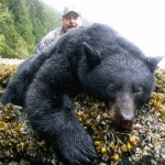 black bear hunts,hunting black bear,hunting guides,hunting outfitters