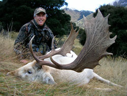 fallow deer hunts,hunt new zealand,hunting guides,hunting outfitters